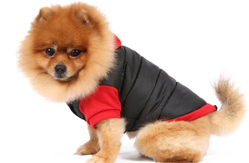 Weihnachtsgeschenke für den Hund jetzt online kaufen auf Weihnachten.Spass-fuer-den-Hund.de