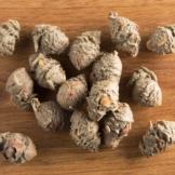 alsa-nature Tannenzapfen, 125 g